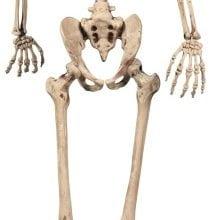 Osteoporoz (Kemik Erimesi) Nedir, Nasıl Oluşur?