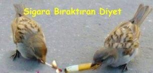 Sigara Bırakmak İsteyenlere Özel Diyet