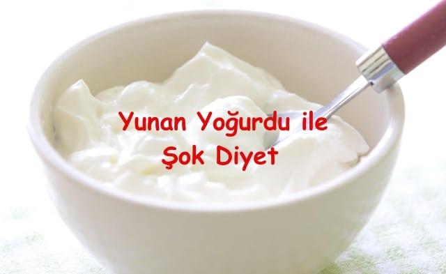 yoğurt kürü