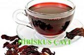 Hibiskus Çayı ile Zayıflama