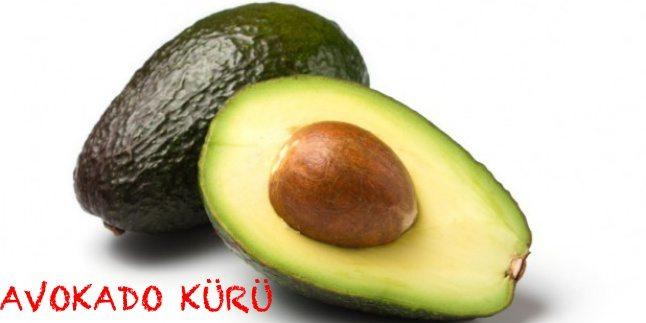 Avokado ile Zayıflama