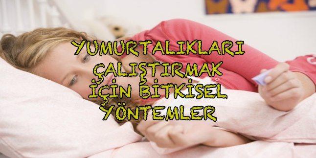 yumurtalik-nasil-calisir